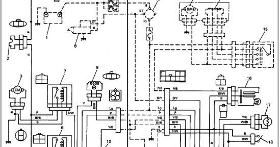 Honda Z50r Wiring Diagram Honda Free Engine Image For User Manual