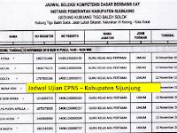 Jadwal dan Nama Peserta UJIAN CAT CPNS 2018 - Kabupaten Sijunjung, Download Disini !!!