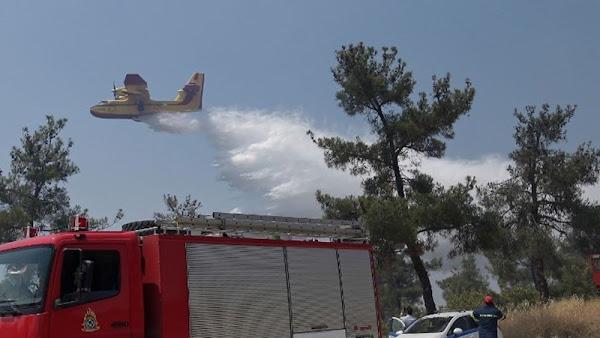 Δύο φωτιές στη Φθιώτιδα - Μεγάλο πύρινο μέτωπο στη Στυλίδα