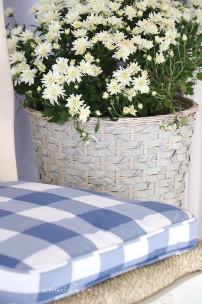 Fall blue and white cottage style small foyer lives large with white potted mums in blue and white woven basket
