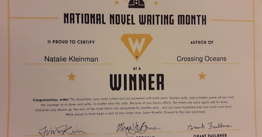 After NaNoWriMo - Did I rise to the challenge?