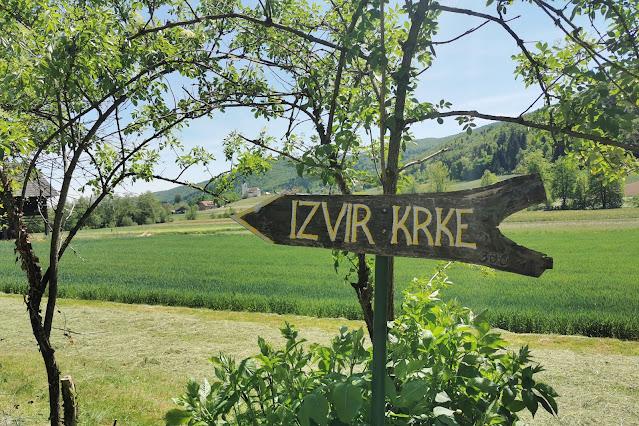 Izvir reke Krke