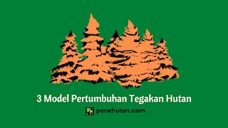 3 Model Pertumbuhan Tegakan Hutan