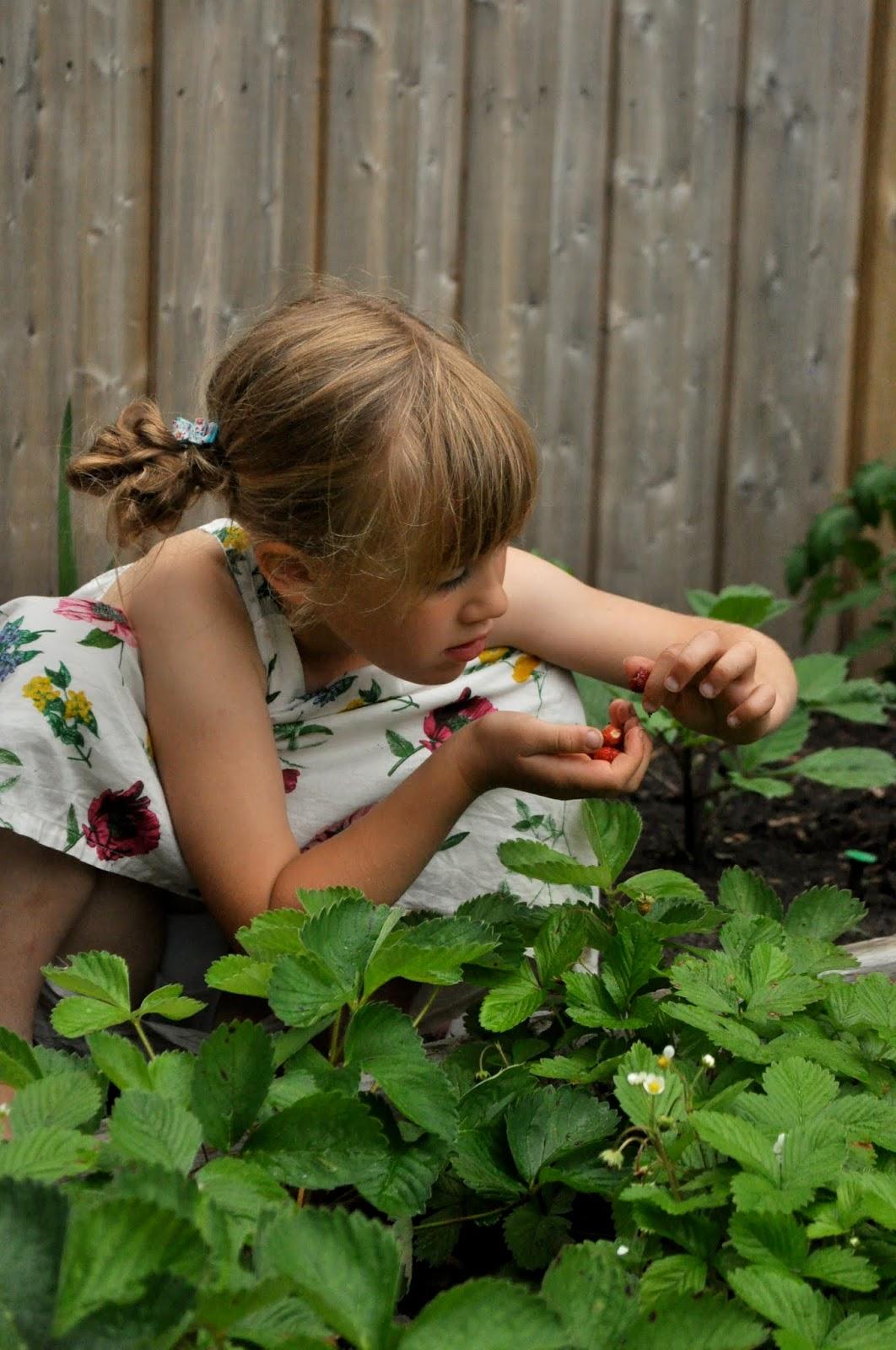 Tall Tales of the Kantor family: garden girl