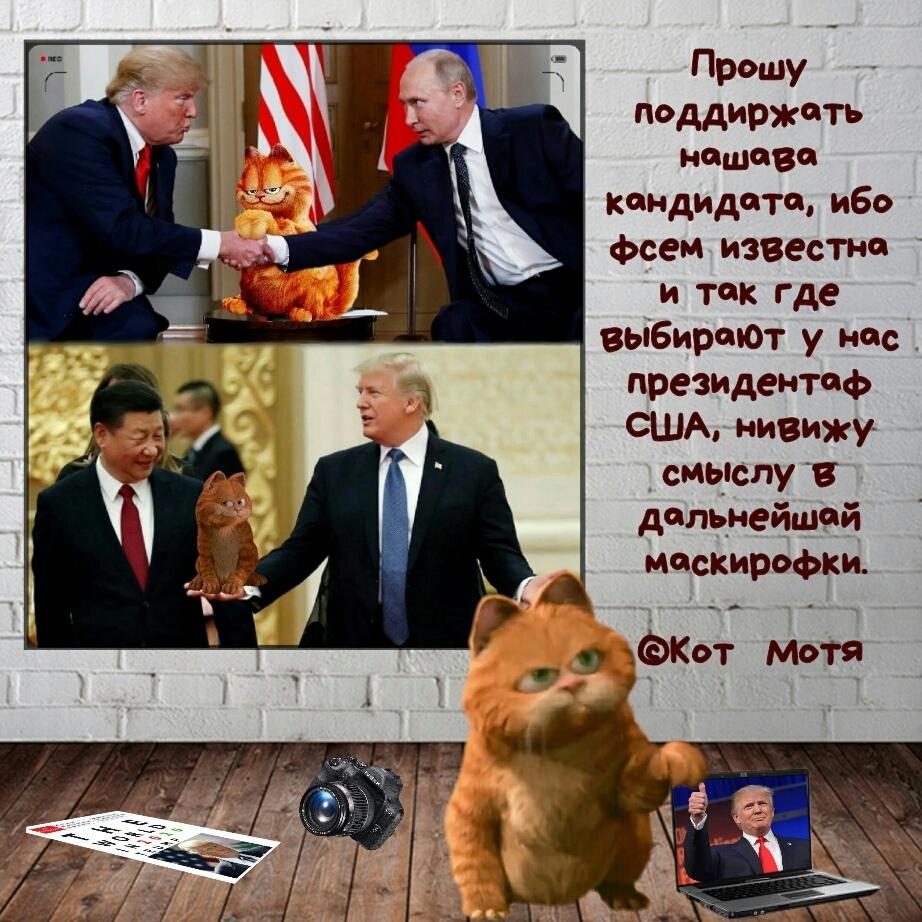 Блог Кота Моти  OSg62HLvAgA
