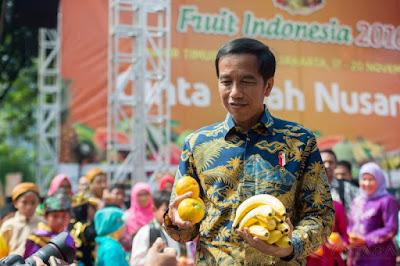 peluang usaha pisang indonesia