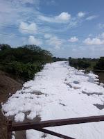 प्रदूषित नदी