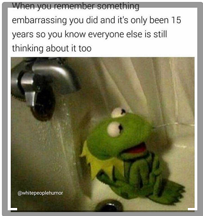 kermit embarrassed anxiety meme
