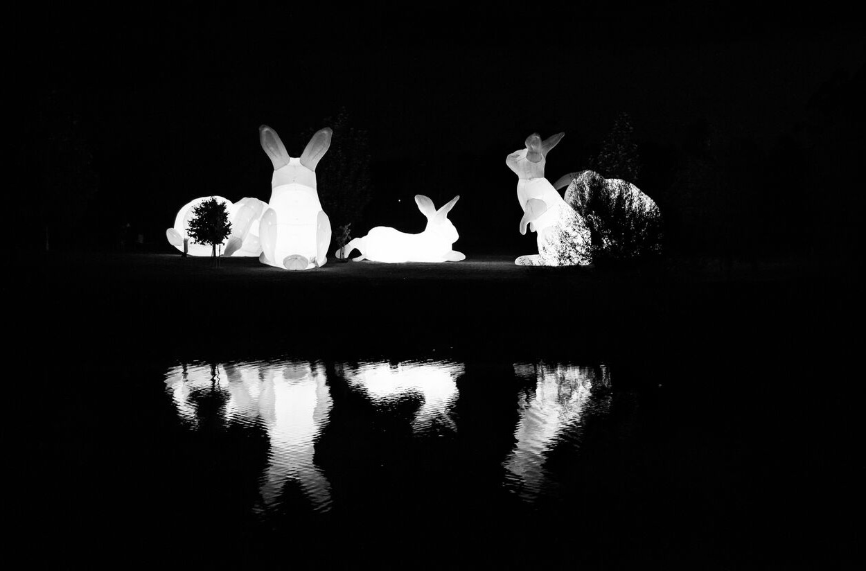 Enchanted Parks, Saltwell Park - Inventors Ball - Bunnies