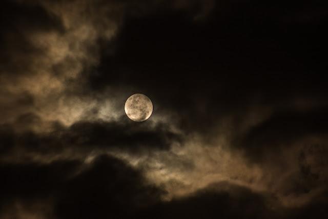 Visitante-Nocturno
