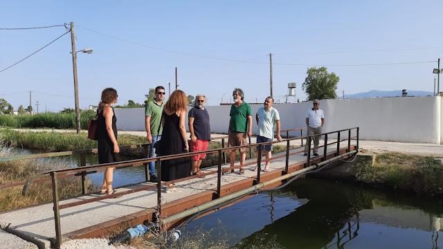 Μανώλης Βέμης: Ο Υγρότοπος Ναυπλίου - Νέας Κίου και ο Ποταμός Ερασίνος χρειάζονται την προστασία μας