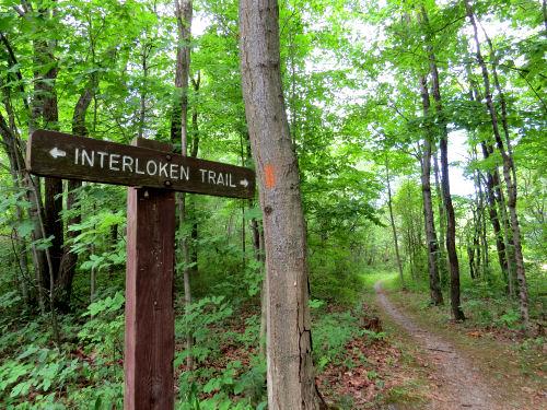Interloken Trail