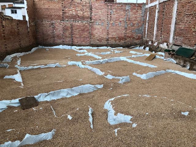 Cubierta geotextil de los mosaicos de Martos