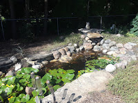 Maintenance,  plant removal, Koi pond maintenance, Water Sanitation, weed removal, pull weeds