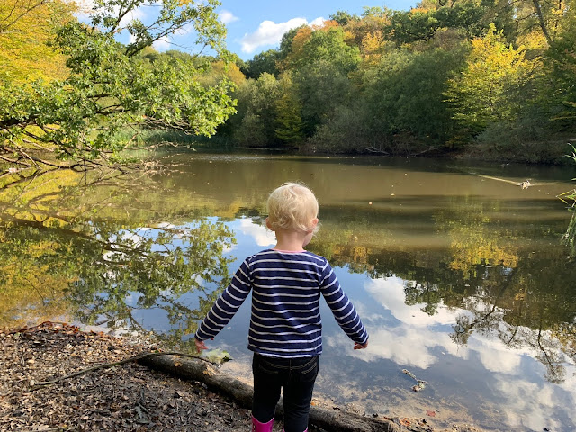 A toddler looking out into a pond in epping forest