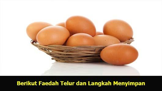 Berikut Faedah Telur dan Langkah Menyimpan