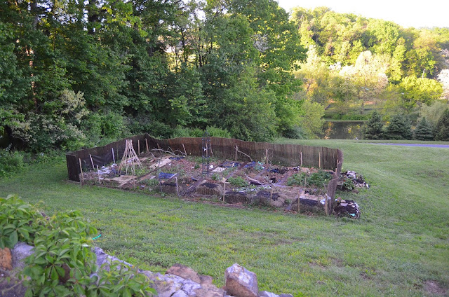 Pennsylvania Potager with Willow Fencing, Bean Teepee, Hugelculture and Hay Bale Gardening