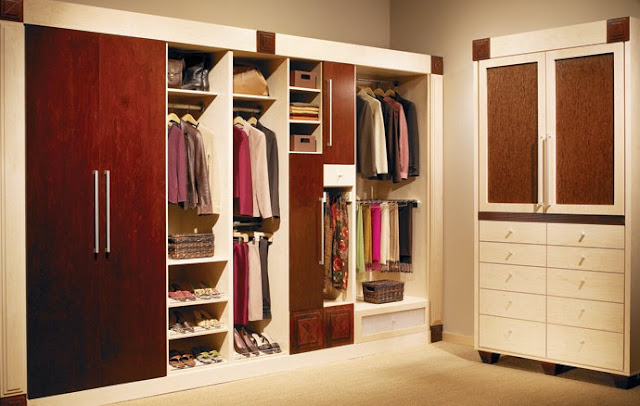 modern wood closet systems with door design