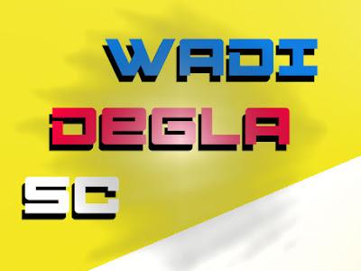 الي اين ذاهب فريق وادي دجلة | الدوري المصري موسم Wadi Degla SC 2020
