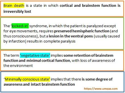 What are the UK diagnostic criteria of brain death?