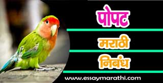 Essay on parrot in marathi