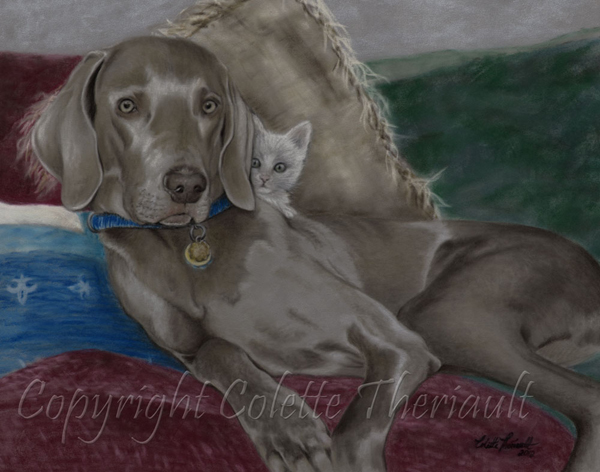 Weimeraner dog and kitten pet portrait by animal artist Colette Theriault