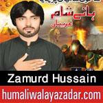 https://aliwalayazadar.blogspot.com/2020/08/zamurd-hussain-nohay-2021.html