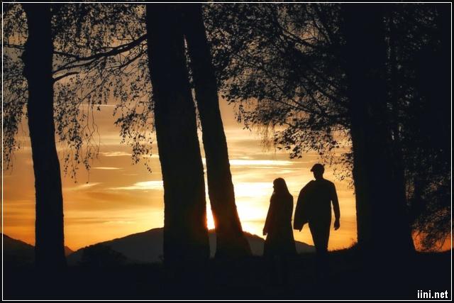 ảnh đôi tình nhân trong rừng chiều