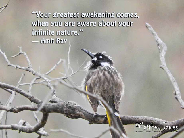 'Your greatest awakening comes, when you are aware about your infinite nature' - Amit Ray
