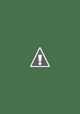 đai karatedo phong trào