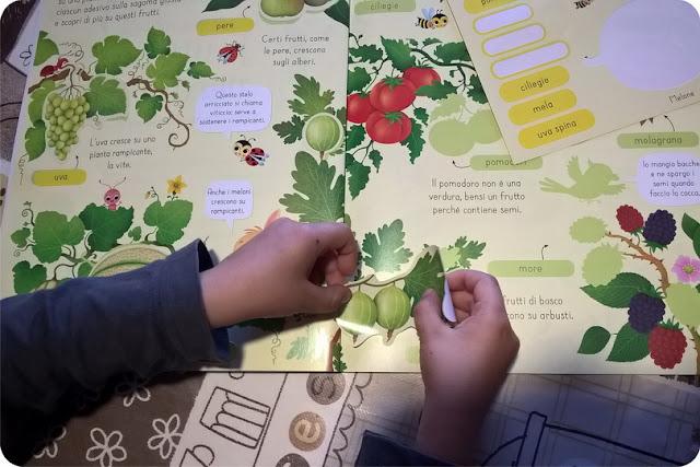 libri per bambini edizioni usborne