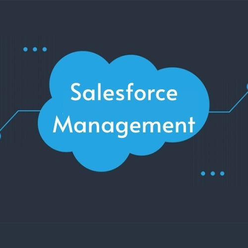 Sales Force Management: Definition, Activities, Objectives, Elements and Functions, Process, Roles, Strategies, and Other Details