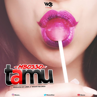 AUDIO: Mbosso (Mboso) - Tamu :Download Mp3 (New Song)