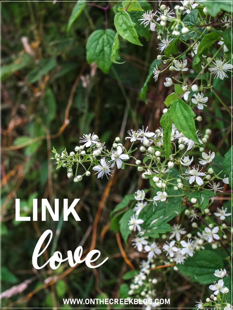 Link Love // All the links I was loving in July 2019! | On The Creek Blog