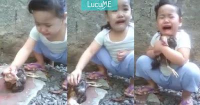 Video Anak Kecil Menangis Meratapi Ayamnya yang Mati Ini Viral di Media Sosial