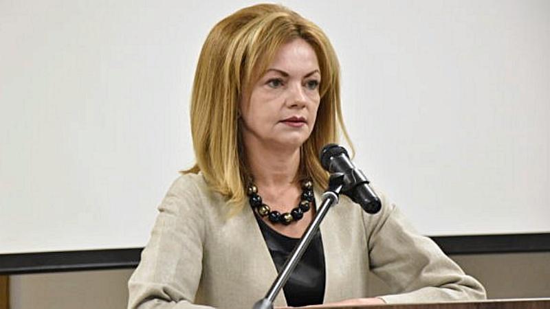 Deputat PSD Mirela Adomnicăi