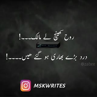 Sad Poetry In Urdu 2 Lines With Images
