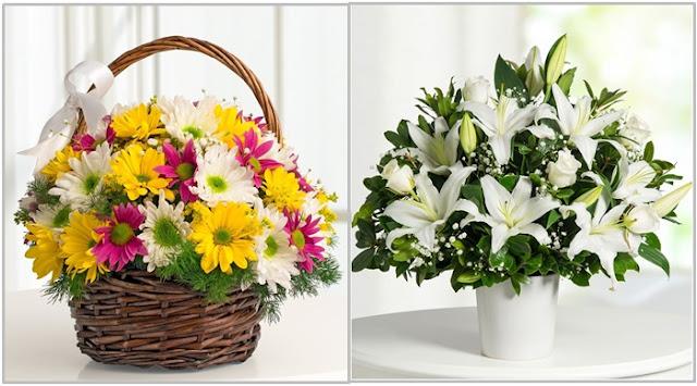 acil şifalar dilerim çiçekleri