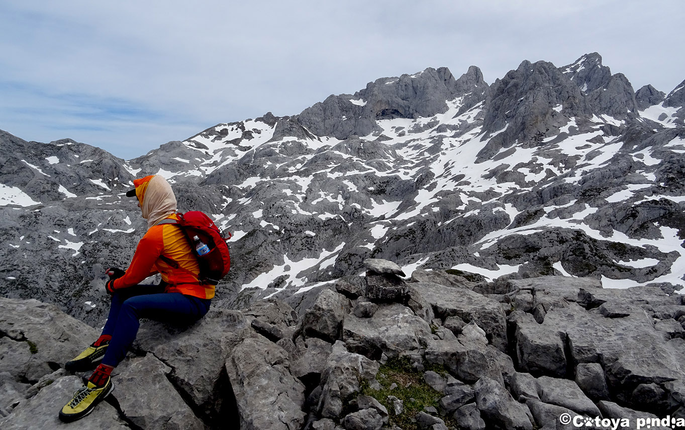 Cima del pico El Camperón en los Picos de Europa.