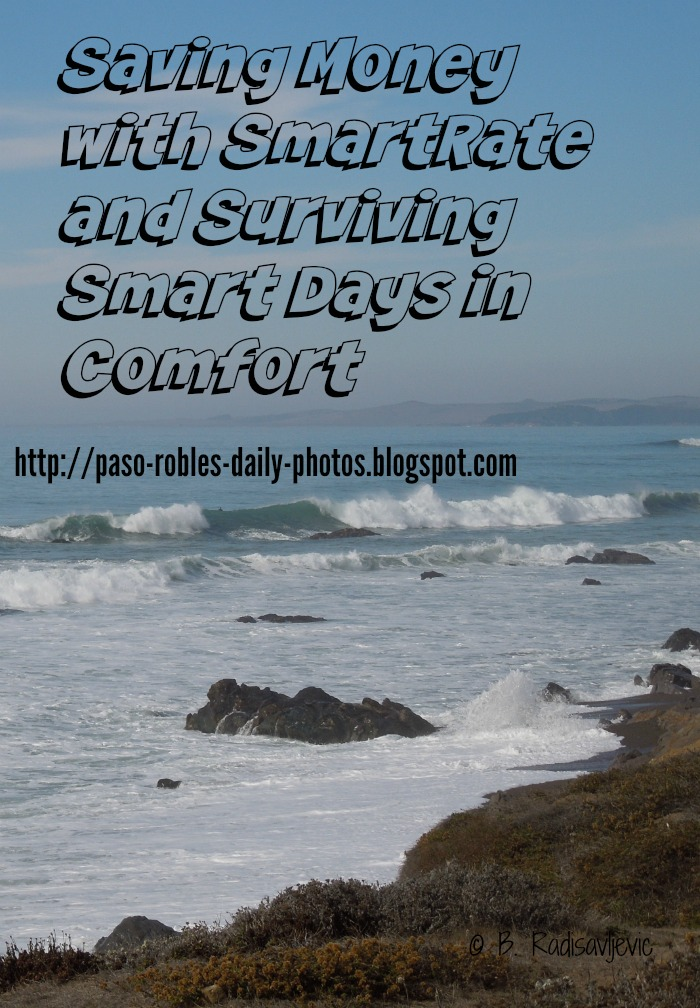 Saving Money with SmartRate and Surviving Smart Days in Comfort