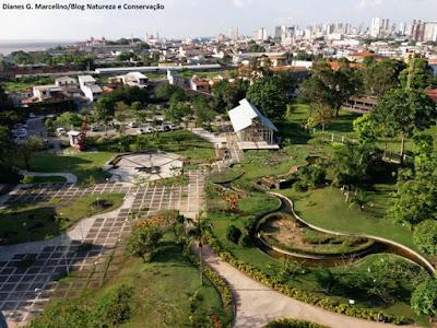 Belém, Mangal das garças,Pará, parque zoobotânico, parque zoobotânico mangal das garças, belém do pará, natureza, onde ir em belém, turismo