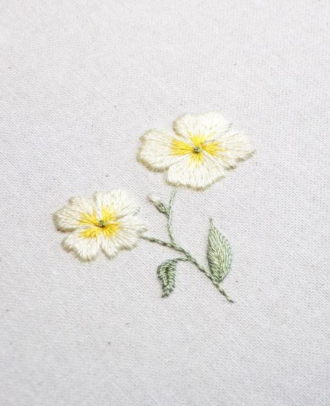 Hướng dẫn thêu hoa anh thảo - Hình 1