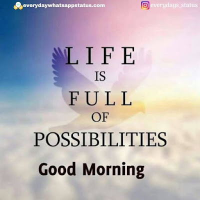 good morning images for whatsapp | Everyday Whatsapp Status | Unique 20+ Good Morning Images With Quotes