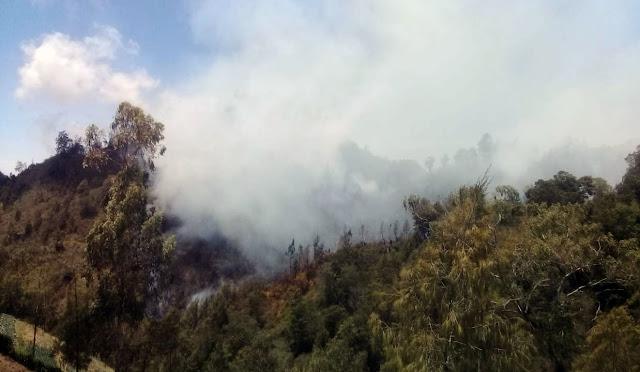 Kebakaran di Semeru