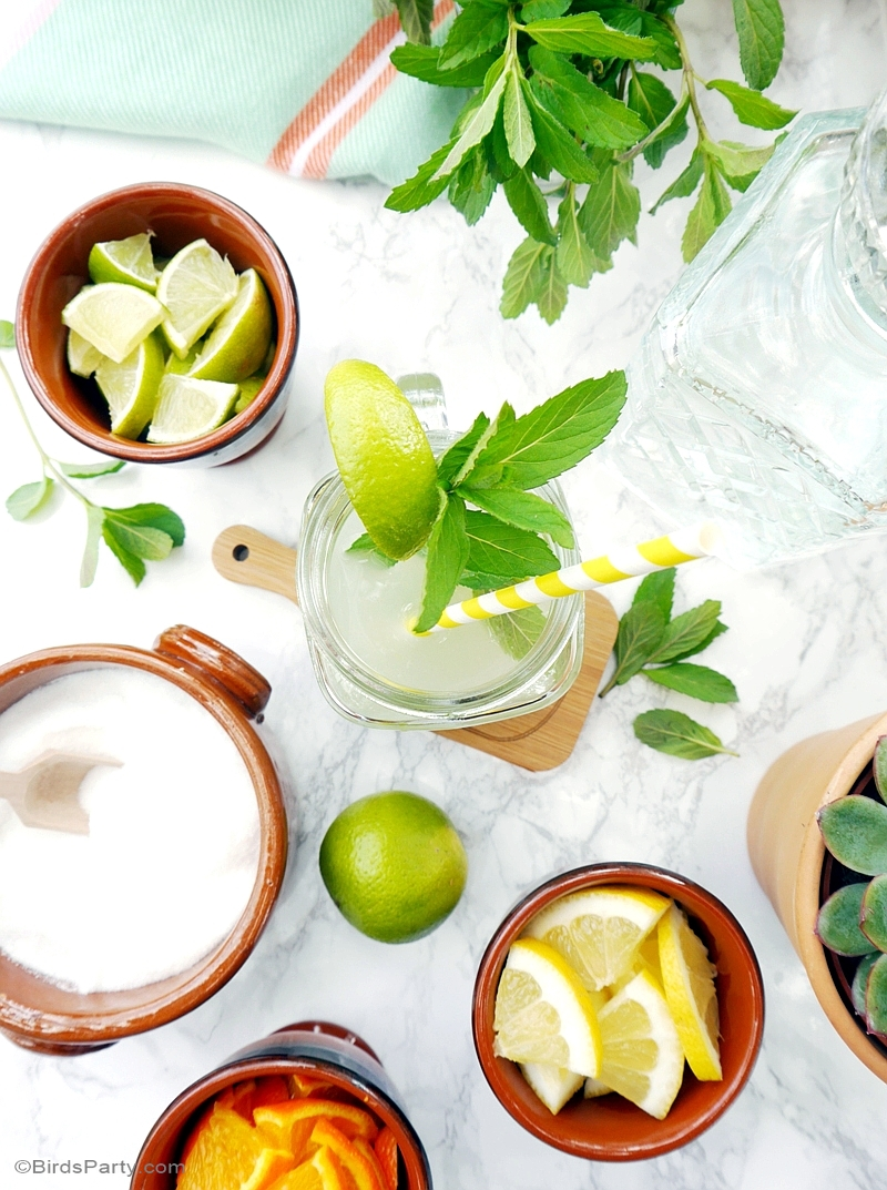 A DIY Mojito Bar with Recipe - BirdsParty.com