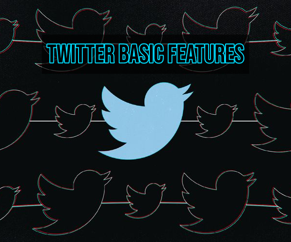 Twitter Basic Features