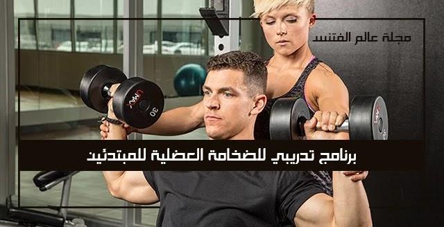 برنامج تدريبي للضخامة العضلية للمبتدئين في كمال الأجسام