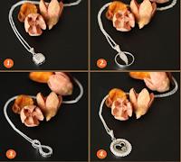 Logo Scegli tu quale collana in argento vincere gratis con Gioielli Eshop