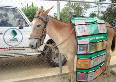 bibliomulo in Venezuela