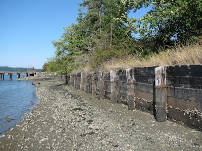 Photo of Cornet Bay in Island County with shoreline bulkhead still in place.